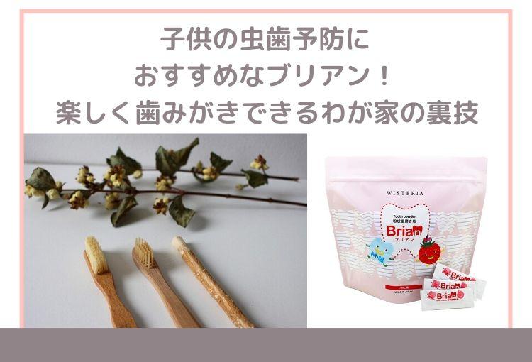 ブリアン歯磨き粉の使い方。子供の虫歯予防におすすめ!楽しく歯磨きできるわが家の裏技
